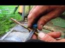 Как я прививаю Окулировка щитком в приклад
