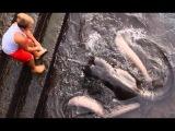 В ШКОЛЕ НАД НИМ ИЗДЕВАЛИСЬ ! НО СПУСТЯ НЕСКОЛЬКО ЛЕТ ОН УДИВИЛ ВСЕХ Вот это рыбалка 2018 РЫБАКИ НЕ ПОНЯЛИ ЧТО ЭТО ЗА ВОЛШЕБНЫЙ ПРУД ! ОЧЕНЬ МНОГО РЫБЫ!  Вот это рыбалка 2018 ты не поверишь Реакция рыбы на рыбака ловля рыбы на, рыбалка которая