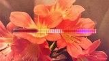 Aeron Aether - Florescence Silk Music