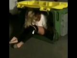 Хотела пописать в мусорный бак. Видео прикол