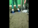 riding hover board and chugging a juice