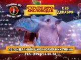 Легендарный Цирк Юрия Никулина в Кисловодске! С 23 декабря!