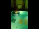 плаваем с дочей в @strongo24 хороший вечер в хорошей компании
