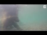 Приколы На Рыбалке В Волгограде