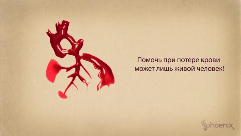 Социальный ролик «Твоя капля крови способна спасти жизнь — не будь равнодушным!»