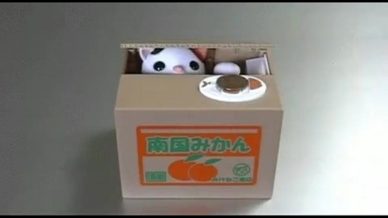 Японская копилка