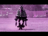 CAPTAIN HOOK ASTRIX - BUNGEE JUMP (ZAOULI DANCE)