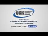 Видеообращение руководителей ОСК