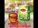 Новые яркие вкусы | Lipton