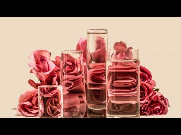 Искажения в работах Suzanne Saroff Необычные фотографии через воду и стекло