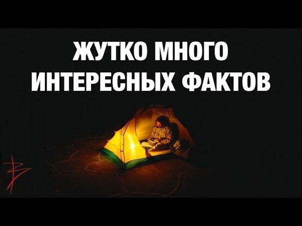 Скрытая история культура традиции наших предков Знания славян Школа развития человека Сундаков