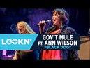 Black Dog | Gov't Mule w/ Ann Wilson | 8/25/17 | LOCKN'