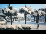 Юрий БОГАТИКОВ - Крымский снег