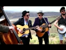 Elvis Costello and Mumford Sons The Ghost of Tom Joad Do Re Mi Medley (Acoustic Cover)