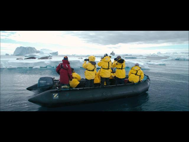 Quark Why Antarctica