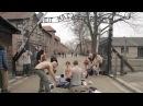 Беларусаў, абвінавачаных ў апаганьванні Аўшвіцу, пасадзяць Антивоенная акция в Освенциме Белсат