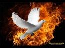 Пророчество месть Ливии Катастрофа в США затронет весь мир Россия победит битву