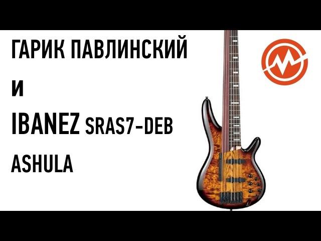 Бас гитара IBANEZ SRAS7 DEB Ashula
