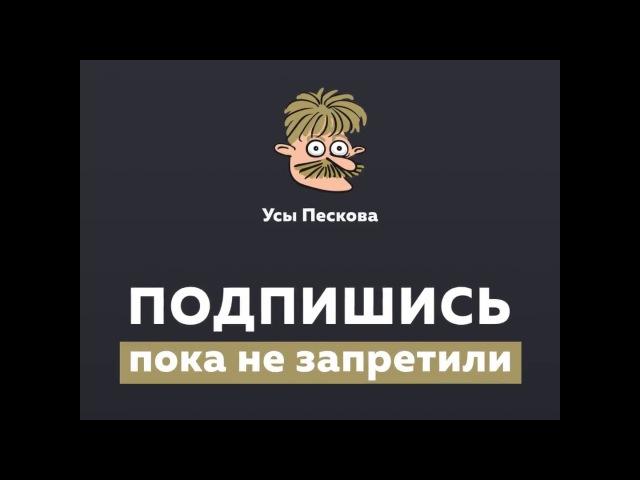 Вор из Бандитского Петербурга о России