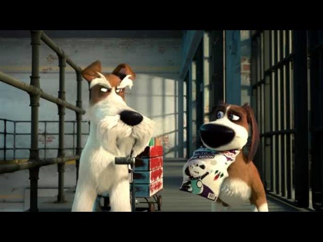 Мультфильм Большой собачий побег 1 сезон смотреть онлайн бесплатно в хорошем к ...