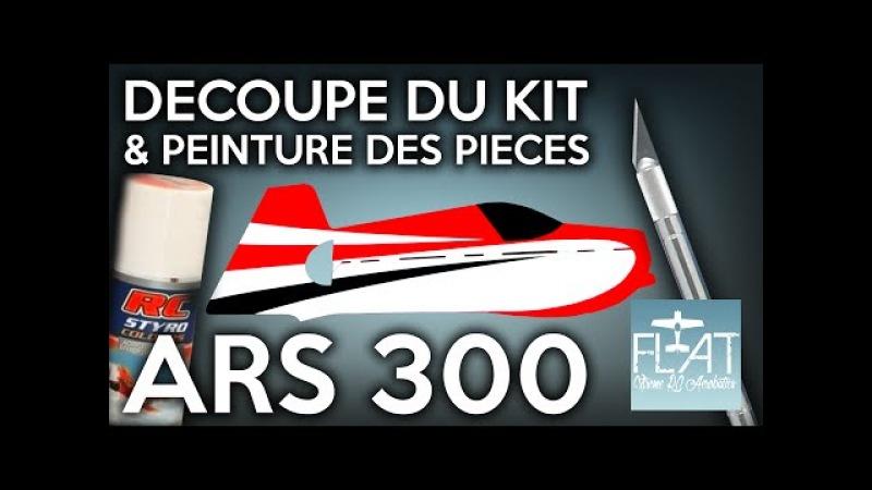 ARS 300 - Découpe Peinture dun Avion 3D Indoor - FLAT Aerobatics