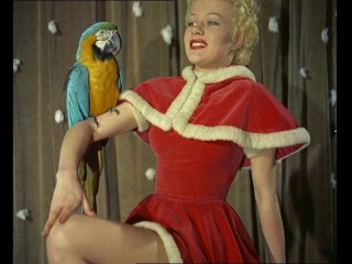 Sexy Ladies mix with Animals for Kinky Christmas Card Collection! (1955 Colour Footage)