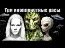 Три основные инопланетные расы