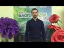 Игорь Ивченко Почему я иду на форум БлогоСфера