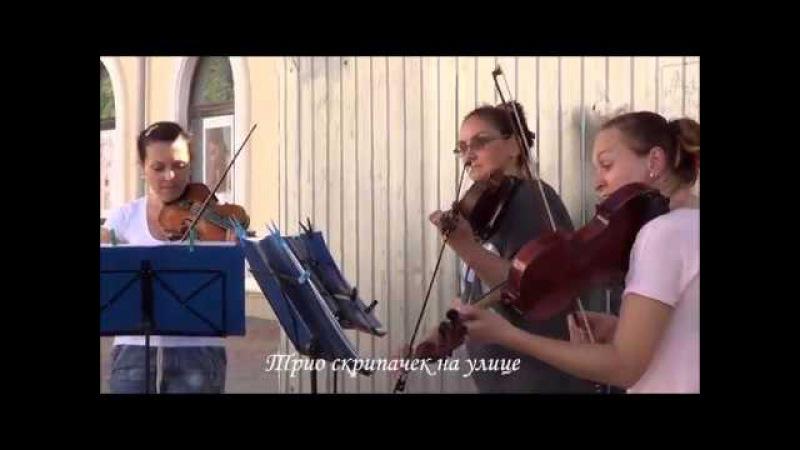 Трио скрипачек играет классную музыку на улице