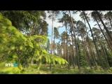 Природа Валаамского архипелага. Весна. RTG HD, 2013