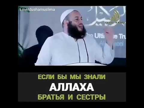 Умар Аль Банна если бы мы знали Аллаха