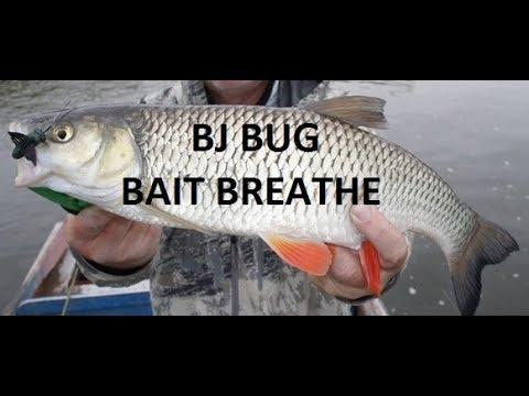 Bj-Bug Bait Breath