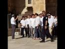 Environ 75 rats musqués fanatiques youpins ont envahi et sali l'espalande de la Mosquée Al Aqsa ce matin