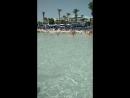 пляж нисси бич