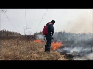 Природные пожары в Амурской области, апрель 2018.
