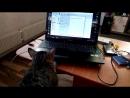 Мотя IT-шник, настраивает мой ноутбук