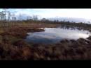 Эстонское болото тропа Viru Raba fail scscscrp