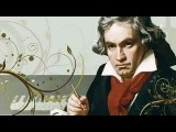 Beethoven Biography - Life of Ludwig Van Beethoven - Discovery History Documentary