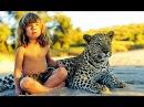 Дети маугли Реальность или фантастика National Geographic