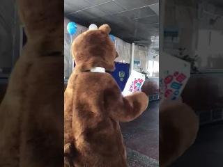 В Бурятии на избирательный участок пришёл медведь с паспортом