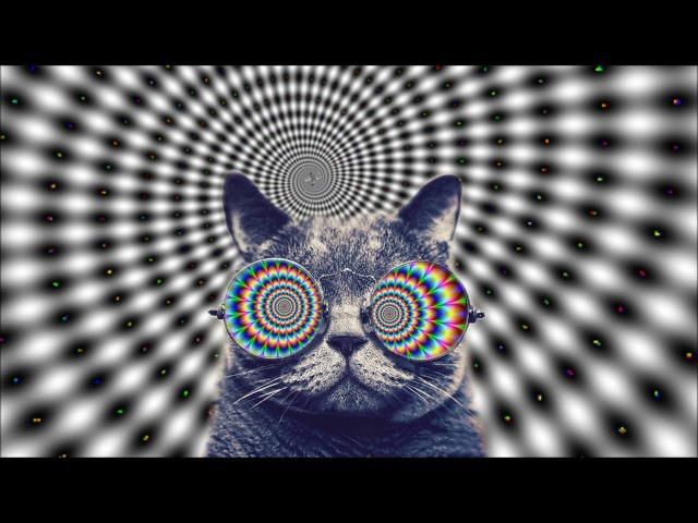 Trippy Cat 2017 MINIMAL HOUSE ELECTRO [ Coronita 2017 Minimal After Megamix ]