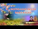 Игра на пианино школьницы Хан Чжин Ми (ТВ КНДР).