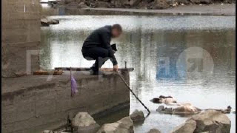 Один из двух убийц женщин в Хабаровске предстанет перед судом.MestoproTV