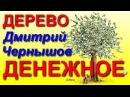 Тренинг Денежное Дерево Правдивый Обзор Курса Дмитрий Чернышов заработок от 20 000 р в месяц с ЯБО