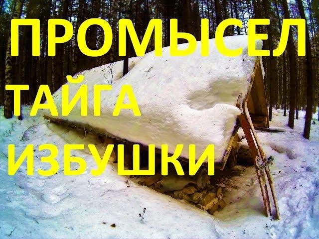 Жизнь в тайге. Рождественские морозы.Таёжные зимовья.