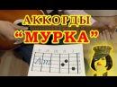 МУРКА | Аккорды | Гитарный бой | Разбор на гитаре видео урок