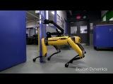 Terminator 2018 Spot Mini Robot it's alive!