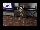 Скелет танцует дома
