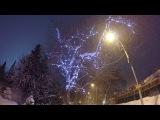 Гирлянда на дереве в снежном парке. Footage/Футажи
