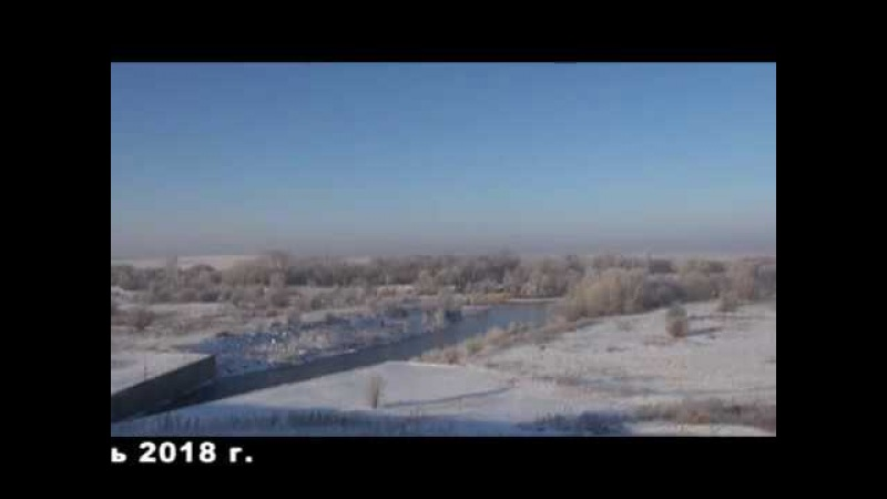 Подкормка диких уток зимой. Гилевское водохранилище. Охот-Общество Локтевского района